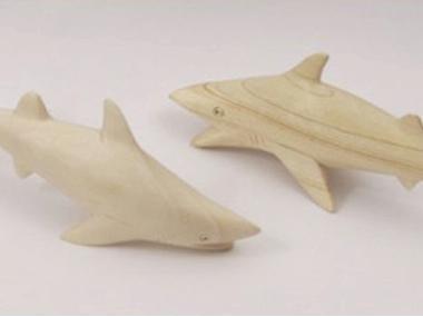 Tubarão madeira Others