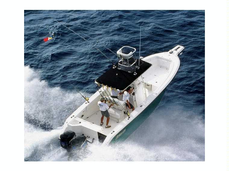 Boat angler 2900cc inautia for Angler fishing boat