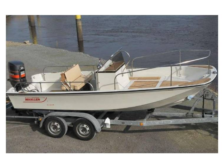 Boat Boston Whaler 17 Montauk | iNautia com - iNautia