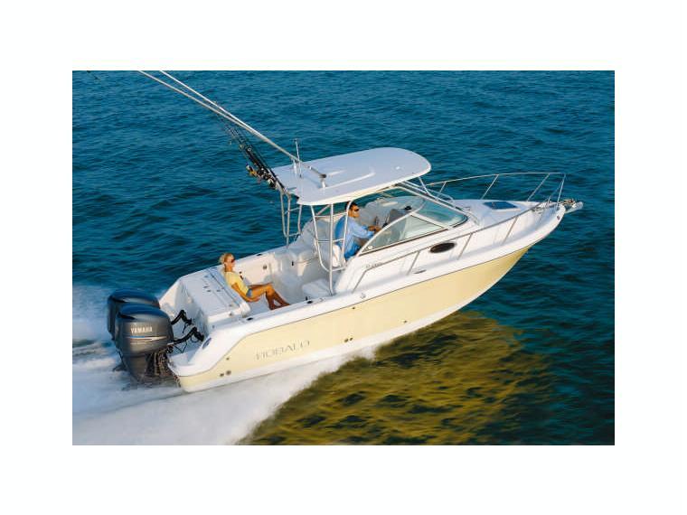Boat robalo 265 inautia for Robalo fish in english