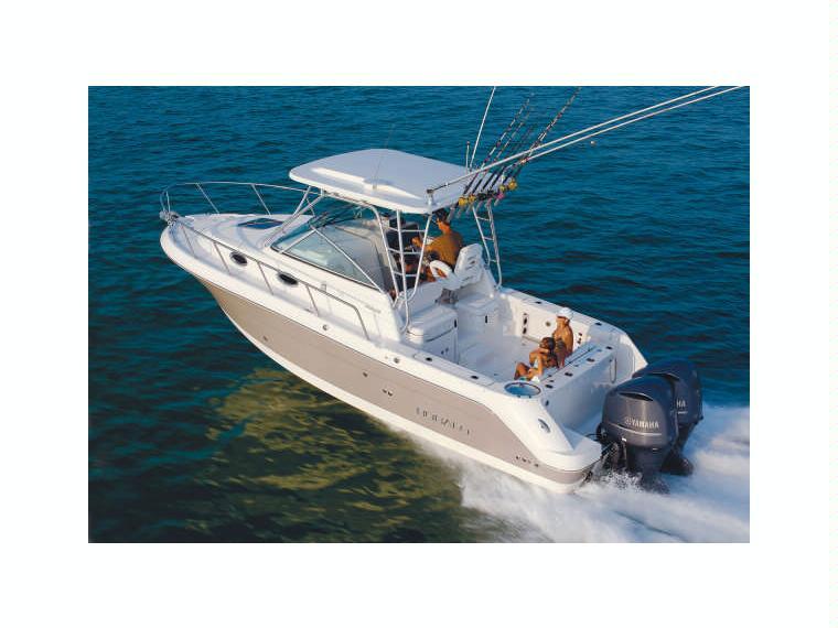 Boat robalo 305 inautia for Robalo fish in english