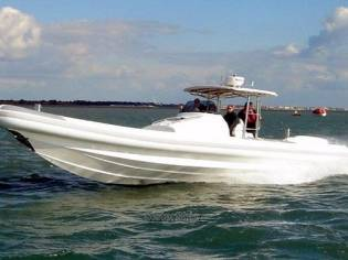 Cougar C12