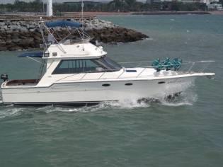 Tiara 36 Motor Yacht