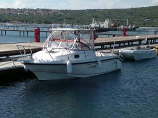 Conquest Boston Whaler
