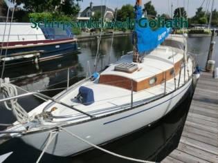 Trewes Commodore 31