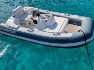 Williams Jet Tenders 285