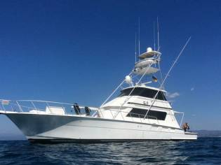 Hatteras 65 Convertible EB