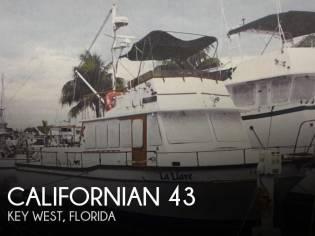 Californian 43 MY