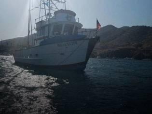 Custom 6 Pack SportFIsh / Dive Boat