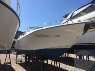 Cruisers Yachts 29
