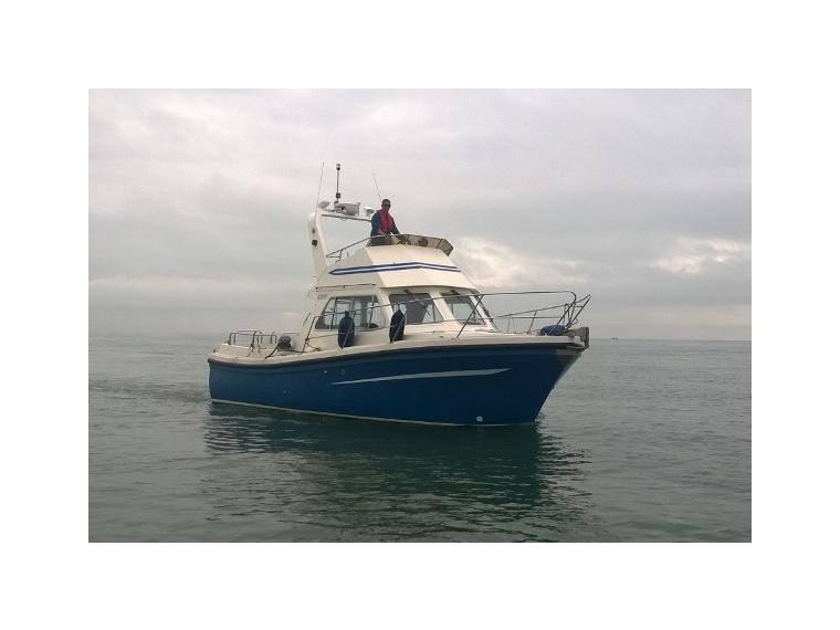 Harbour Pilot 333