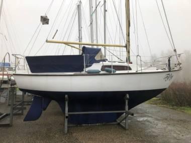 stabiele kwaliteit gratis bezorging best cool Hurley 700 in Netherlands   Sailing cruisers used 05454 ...