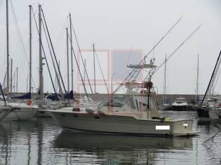 Tiara-yachts TIARA 36 EXPRESS