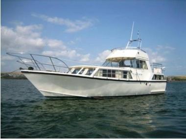 Moonraker 36 in Devon   Power boats used 10010 - iNautia