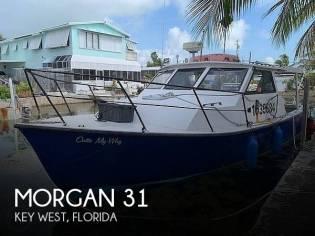 Morgan 31