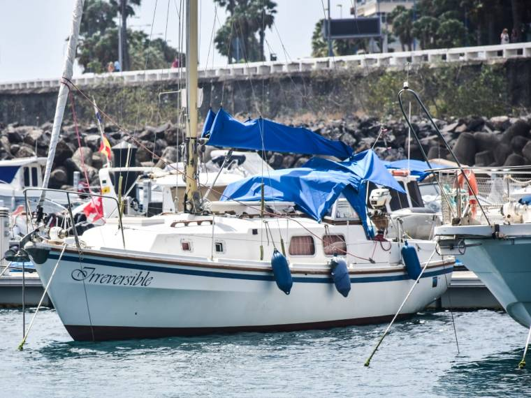 WESTERLY 31