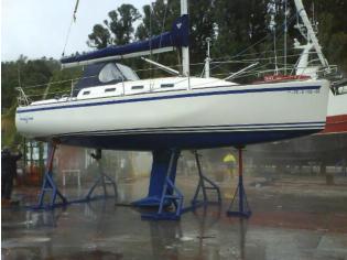 golfiño 34