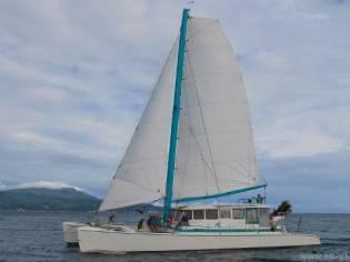 Custom Catamaran 56