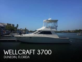 Wellcraft 3700 Cozumel