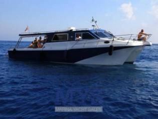 Custom Cougar Catamarans 40 Ferry Hardtop