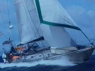 Offshore cruiser 33