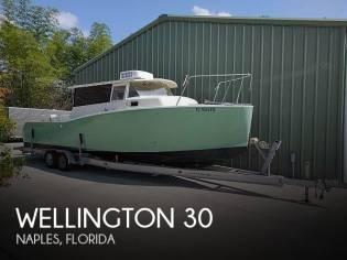 Wellington 30