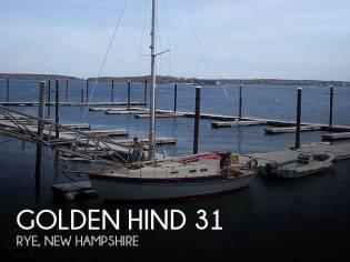 Golden Hind 31