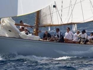 Custom Tore Holm Bermudan Cutter