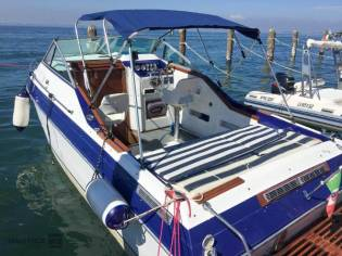 Wellcraft 20 Excalibur Sport