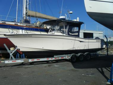 GRADY WHITE CANYON 306 BIMINI in Marina Davila Sport | Power