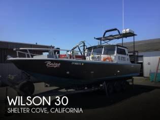 Wilson 30