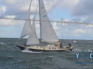 Koopmans 36 One Off