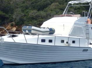 Chris Craft 31 Commander