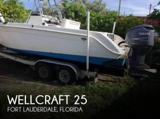 Wellcraft 25