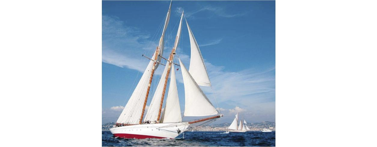 Sailer Service Photo 1