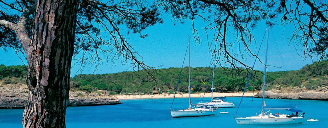 Confianza Yachting Mallorca S.L. Photo 2