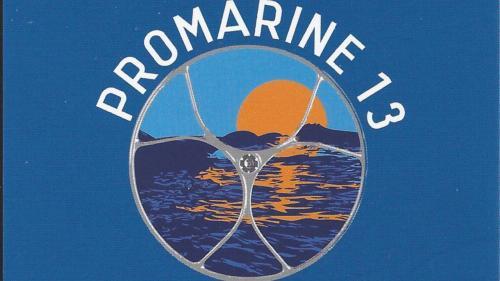 PROMARINE 13 logo