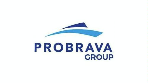 PROBRAVA GROUP logo