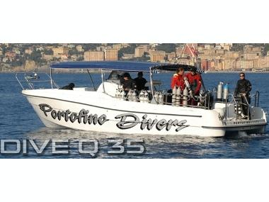Quer 35 Dive Profesional Motor boat - Abi