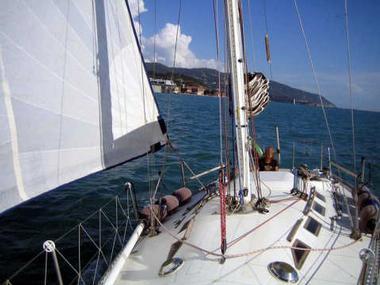 oceanica-ranger-32-372408007175555534970