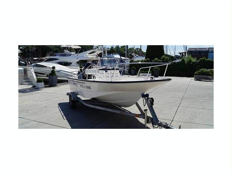 Boston Whaler 170 Montauk In Zuid Holland Day Fishing